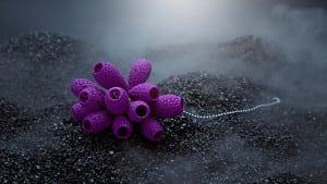 blueberries-02