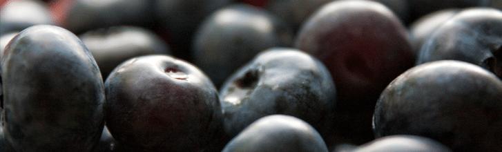 2. Modré a fialové ovoce -  maliny, borůvky, švestky a ostružiny