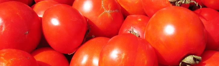 6. Rajčata