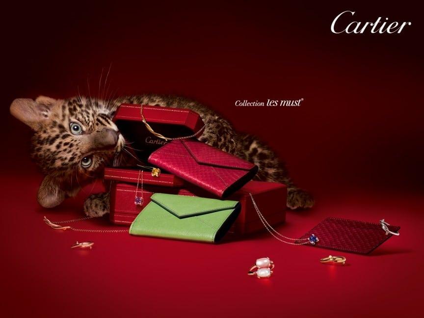 cartier5